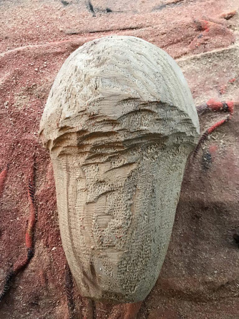 pierrick-gandolfo-sculpteur-sculpture-rouen-houppeville-creation-bois-artiste-creation-fou-du-roi-2